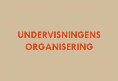 Undervisningens organinsering